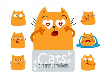Different emotions of a funny cat. Flat vector hand drawn illustration for social network