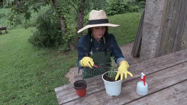 Ženské zahradník s hrnce u stolu