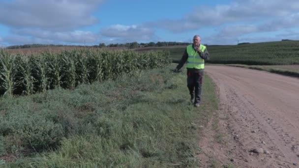 Farmář s DRONY v kukuřičném poli