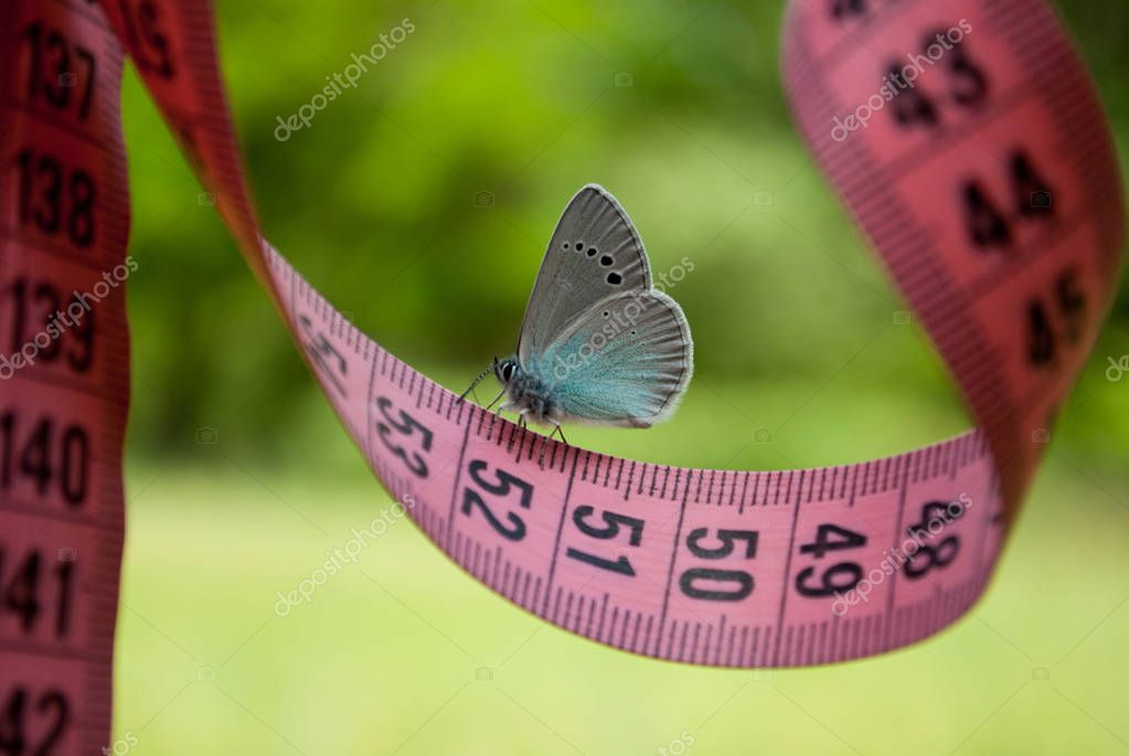 on a measuring tape of pink color there is a blue white butterfly, a close view, on a blurry background, a dream of ease to flounder to lose weight diet, side view, green grass, white bush, measuring tape of pink color, figures