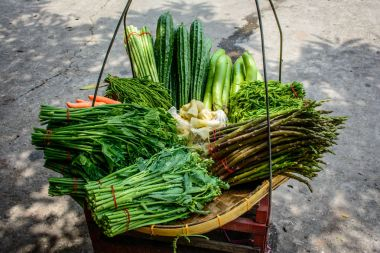 fresh vegetables in the tray