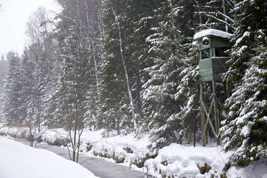 DRUSKININKAI, LITHUANIA - JAN 07, 2011: Guard tower in forest at