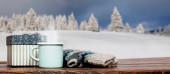 Geschenkbox Handschuhe und Tasse gegen schöne Winterlandschaft holi