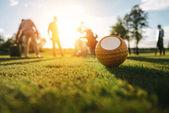Fotografia pallina da golf in erba