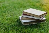 Knih na trávě