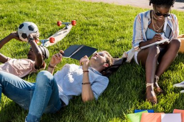 multiethnic students studying in park