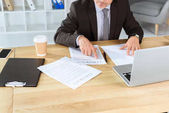 mature businessman with paperwork