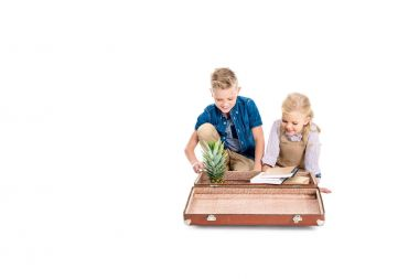 kids with pineapple, books and suitcase