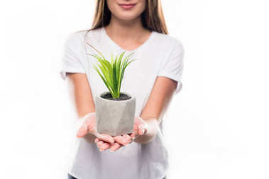 girl holding potted plant