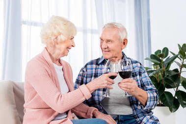 portrait of happy senior couple clinking glasses of red wine while resting on sofa at home