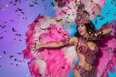 Fényképek brazil karnevál