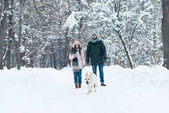 young couple with dog walking in winter snowy park
