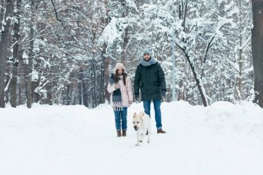 Young couple with dog walking in winter snowy park stock vector