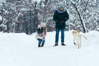 young couple having fun together with dog in winter park