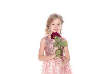 beautiful little child in pink dress holding red rose flower and looking at camera isolated on white