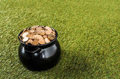 Fotografie zlaté mince v hrnci, stojící na zelené trávě