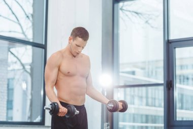 muscular shirtless sportsman exercising with dumbbells in gym