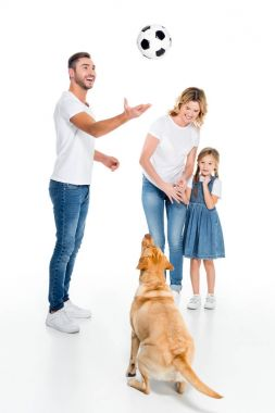 happy family and golden retriever dog playing football, isolated on white