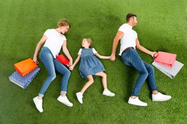 overhead view of smiling family with shopping bags holding hands together on green grass