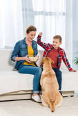 Fotografie mother and son feeding their dog with popcorn while he sitting on floor