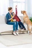Fotografie Mutter und Sohn füttern ihren Hund mit popcorn