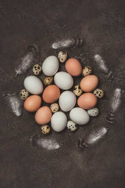 top view of chicken and quail eggs with feathers in circle, decorations for Easter