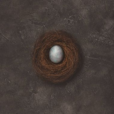 top view of nest with painted easter egg on concrete table