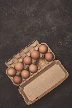 top view of chicken eggs in cardboard tray on grey concrete