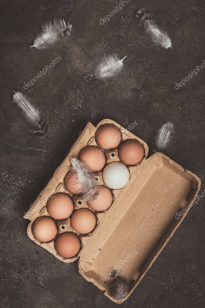 top view of chicken eggs in cardboard tray with feathers