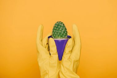 Cropped shot of human hands in gloves holding pot with cactus isolated on yellow stock vector