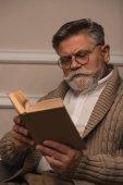 koncentrované starší muž v brýlích, čtení knihy