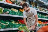 férfi bolti eladó a kötény intézi friss zöldségek élelmiszerüzlet