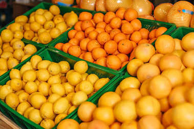 close up view of arranged citrus fruits in grocery shop