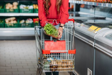 cropped shot of woman putting lettuce salad into shopping trolley in supermarket