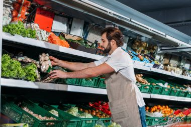 male shop assistant in apron arranging fresh vegetables in grocery shop