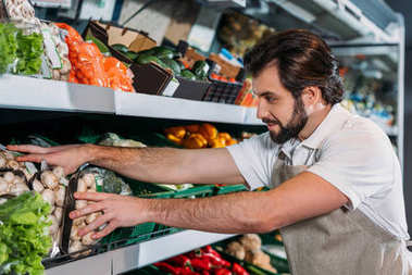 shop assistant arranging fresh vegetables in grocery shop