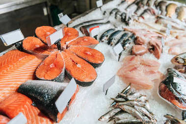 close up view of arranged raw seafood in supermarket