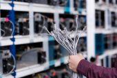 Photo cropped shot of computer engineer holding ethernet wires at cryptocurrency mining farm