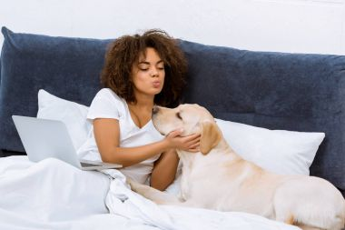 beautiful young woman with laptop in bed playing with dog