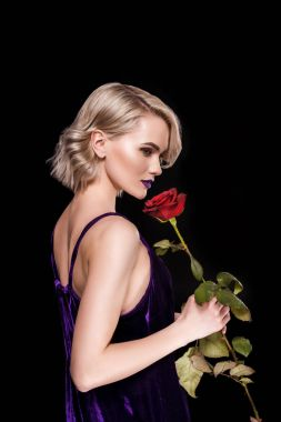 attractive blonde girl posing in purple dress with red rose, isolated on black