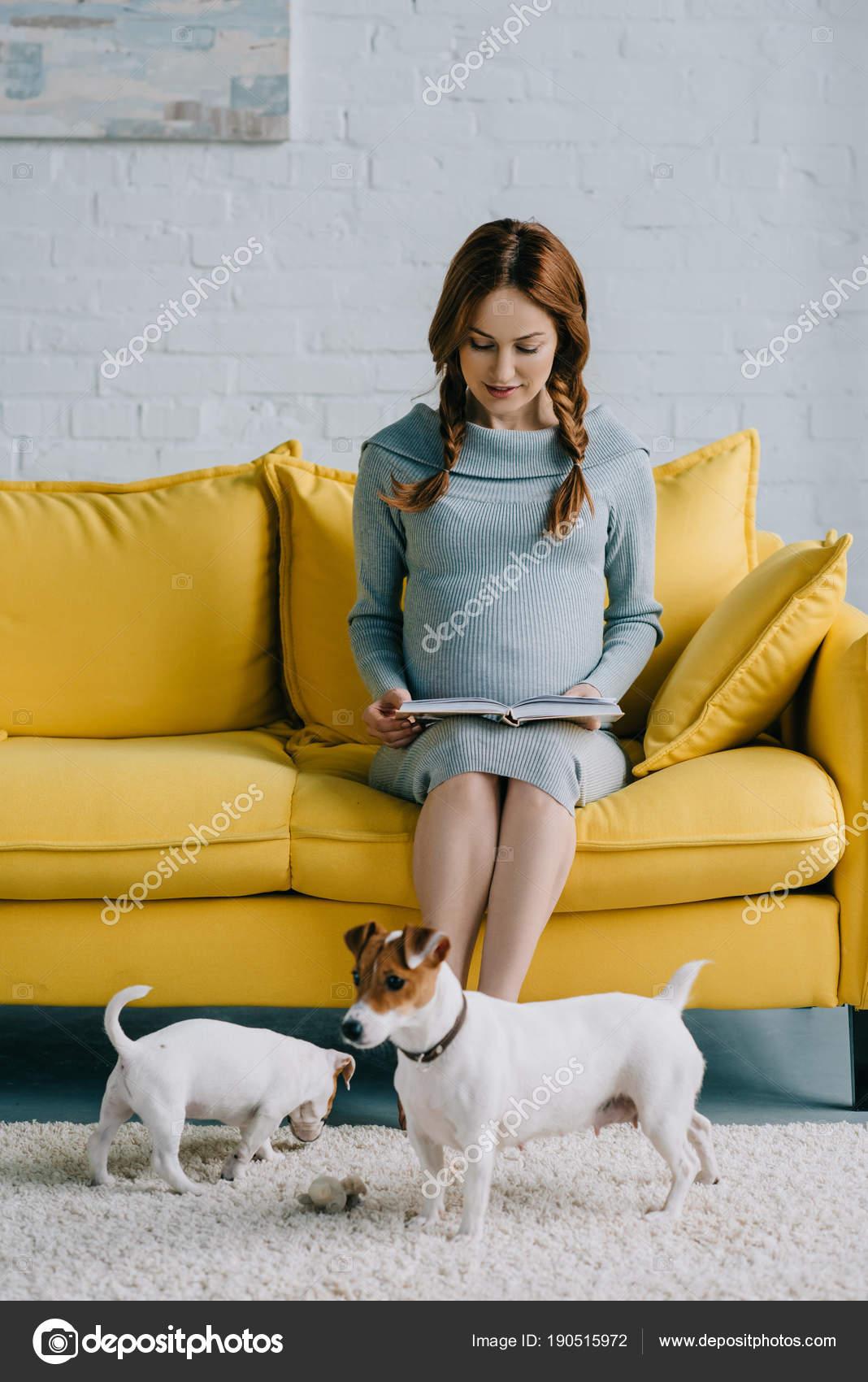 jolie femme enceinte lecture livre jack russell terrier tage dans photographie igorvetushko. Black Bedroom Furniture Sets. Home Design Ideas