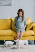 Fotografie atraktivní těhotná žena čte knihu, jack russell teriéry na podlahu v obývacím pokoji
