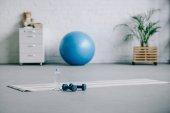 Fotografie jóga mat, činky, plastová láhev vody a fitness míče v obývacím pokoji