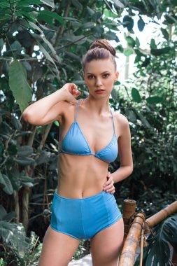 Beautiful girl in bikini posing on tropical resort stock vector