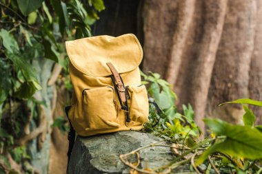 close-up shot of vintage yellow backpack on rock in jungle