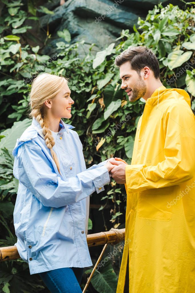 beautiful young couple in raincoats holding hands at rainforest