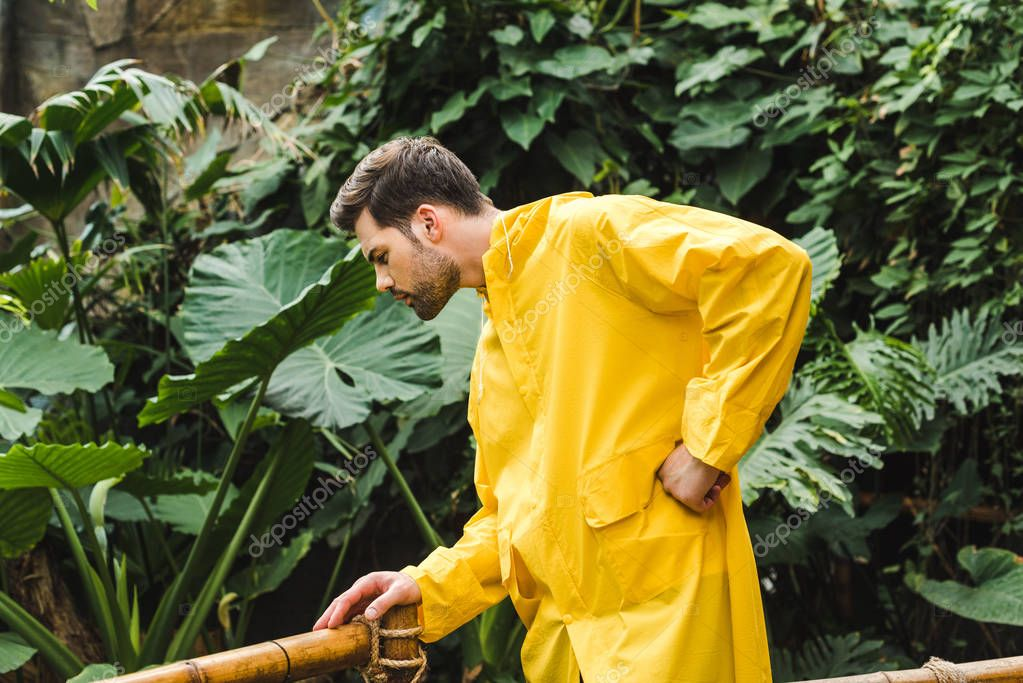 attractive young man in yellow raincoat in jungle