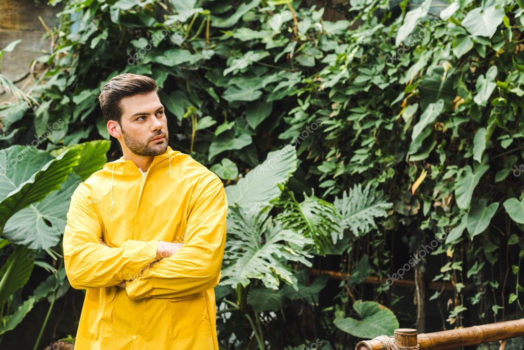 handsome young man in yellow raincoat in jungle looking at trees