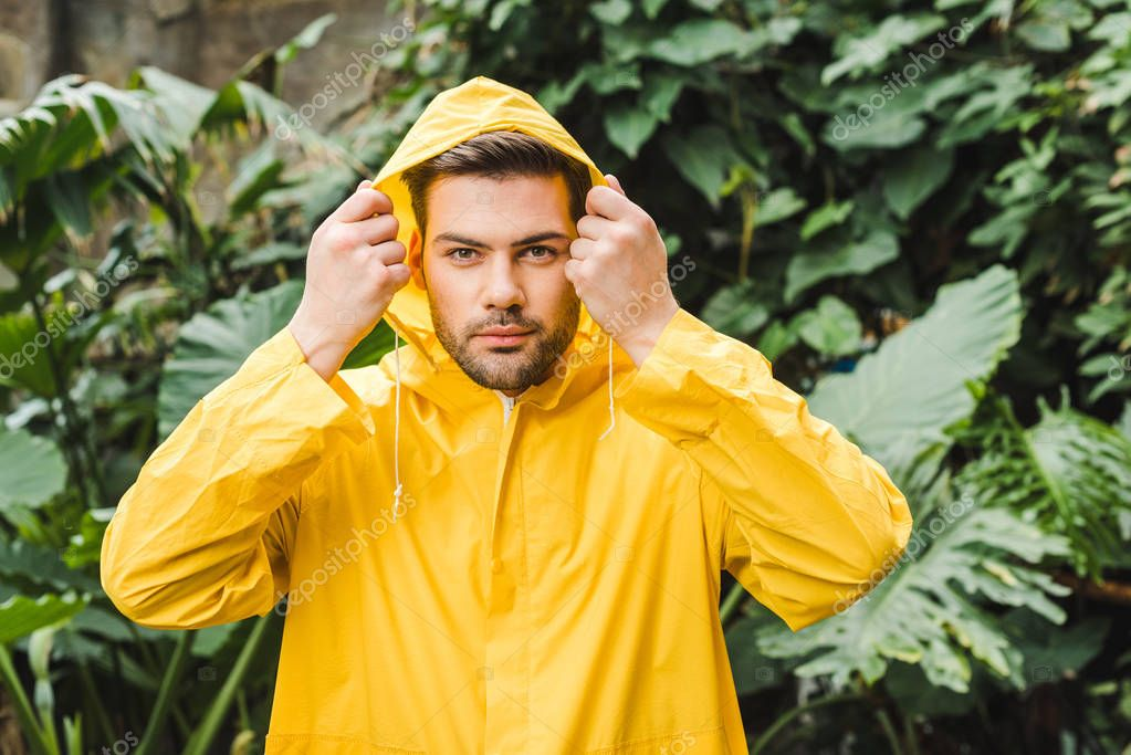 handsome hooded young man in yellow raincoat in jungle