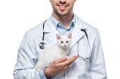 cropped image of male veterinarian with kitten isolated on white background